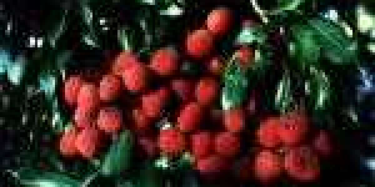 Lychee: Origins - Consumption - Nutrition Facts - Health Benefits